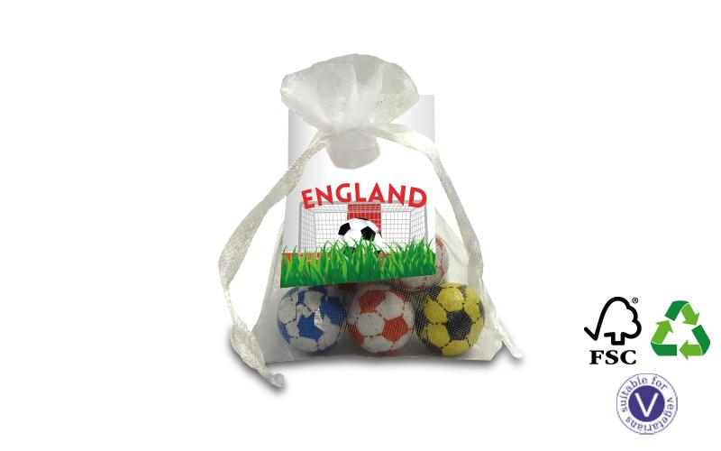 Organza Bag of Footballs
